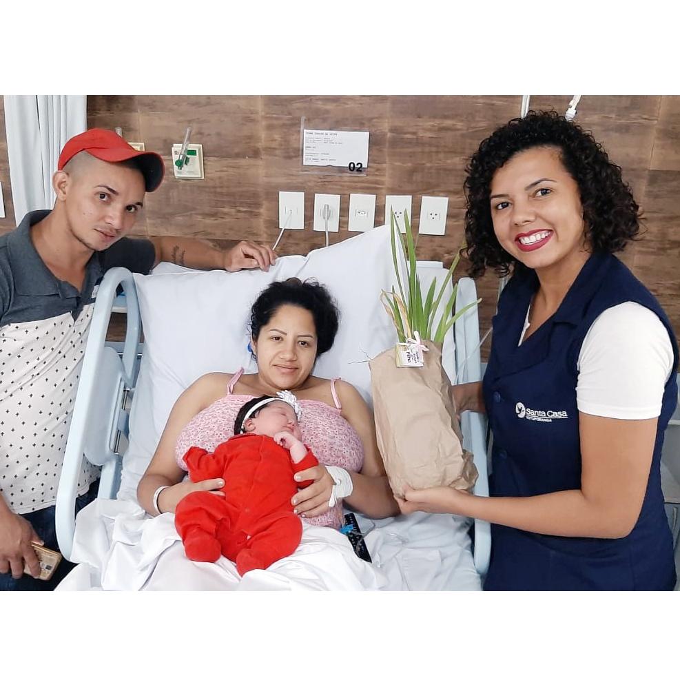 Santa Casa entrega mudas para recém-nascidos