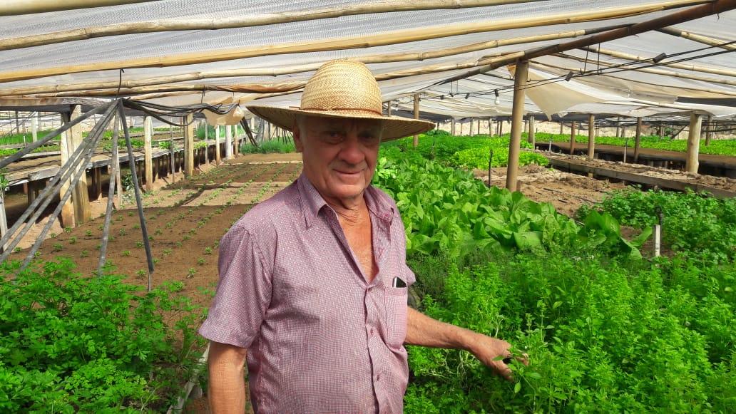 Produtor de Cosmorama destina verduras para Santa Casa