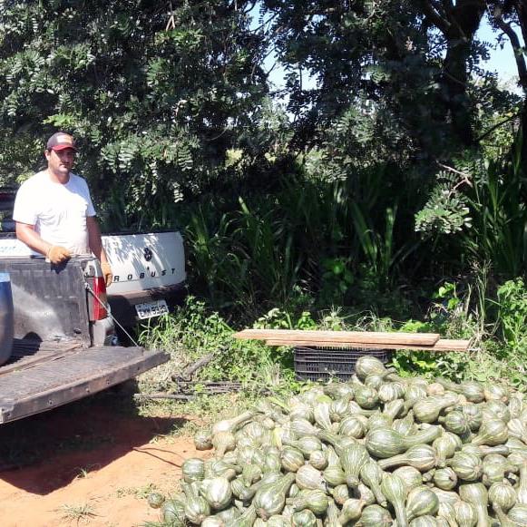 Santa Casa recebe doação de 153 quilos de abóbora